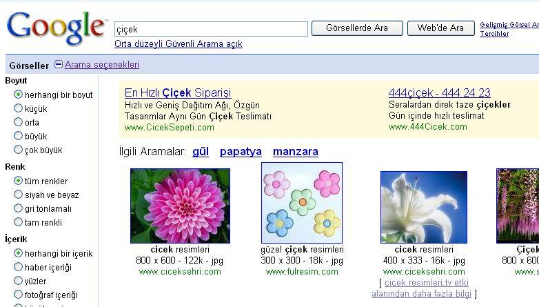 Google Arama Yapısına ve Adwords'e Katkılar